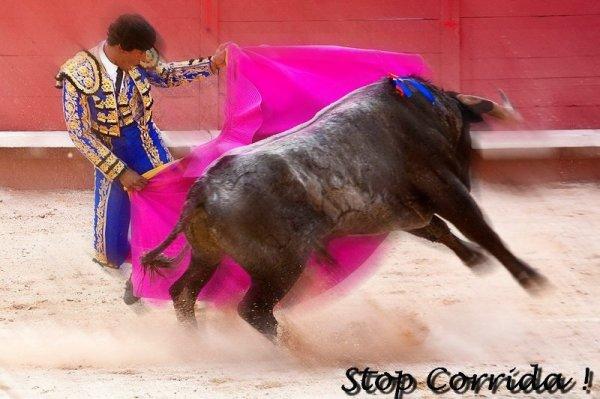 La corrida, un acte barbare !