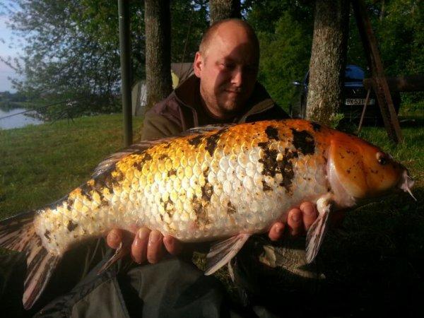 Seul poisson du session en etang priver pres de belfor
