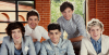 1D-FansFiction