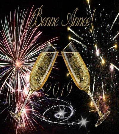 Une Bonne Année 2019 à toutes et tous !!!