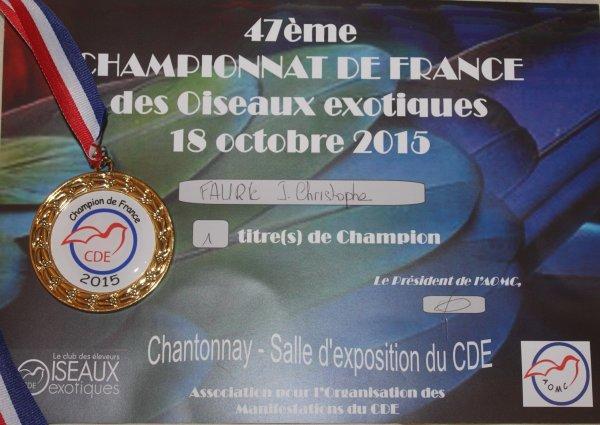 Mon premier Concours: Le National CDE à Chantonnay (17 & 18 Octobre 2015)