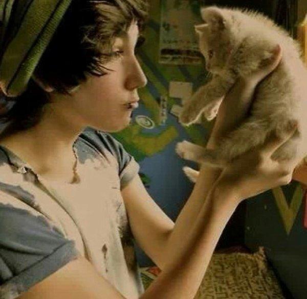 Boys Cats :3