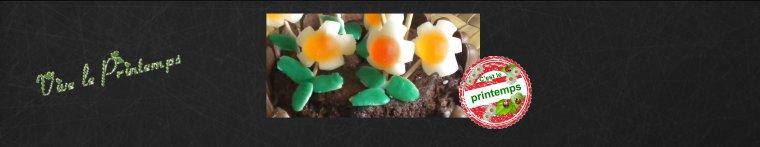 POT DE FLEURS CHOCOLAT ET BONBONS (POUR LES ENFANTS )