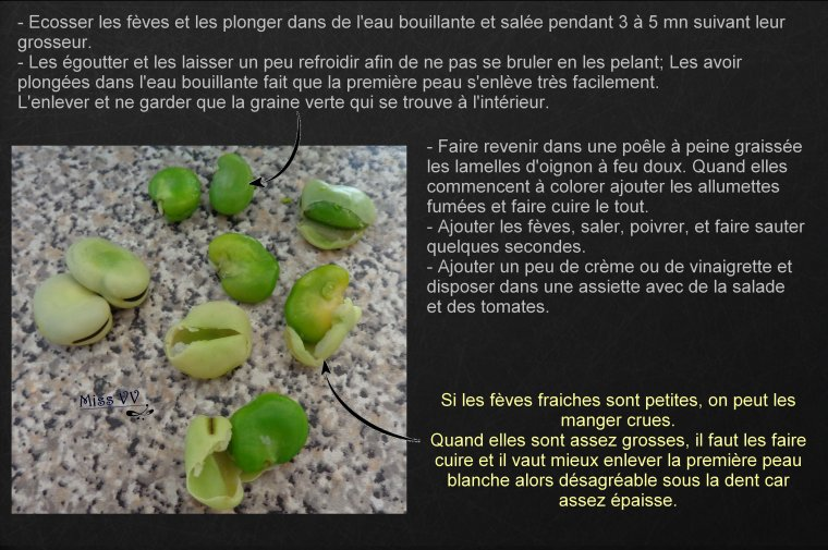 SALADE DE FEVES FRAICHES, ALLEGEES ( POUR LES MAMANS )