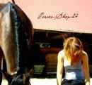Photo de Horses-Shop-27