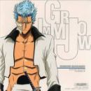 Photo de grimmjow016