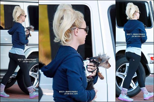 . Britney et sa petite chienne Hannah sortaient d'un hôtel de Beverly Hills, le 31 janvier. .