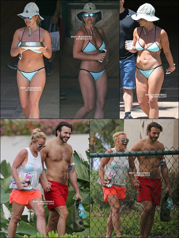 . Britney et Charlie ont été vus se dorant au soleil sur la plage à Hawaii, le 26 mars. .