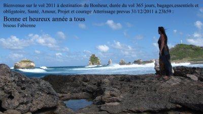 Bonne annee 2011 bon voyage