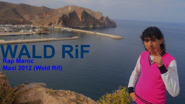 Weld Rif / Wald Rif  (7diNi Na7diK) (2012)
