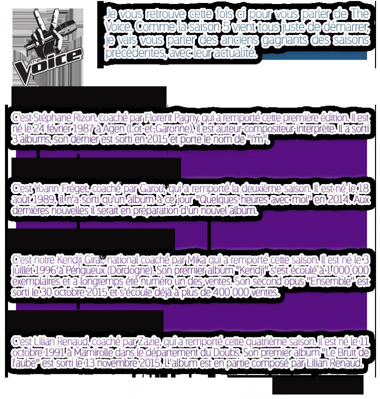 Rubrique musique : The Voice - Estelle