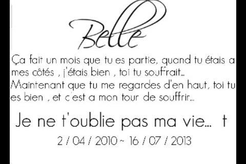 RIP † Belle. La Jument de Ma Vie.. ♥