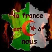 la france pour les algeriens