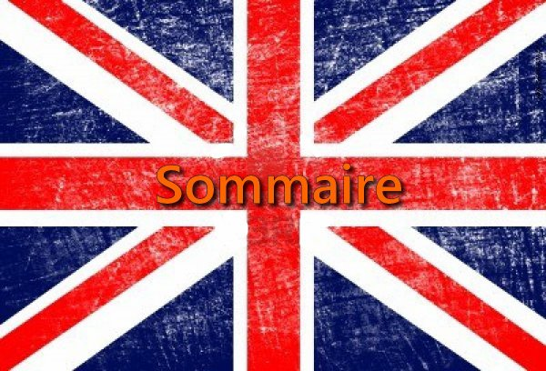 ♫Sommaire♫
