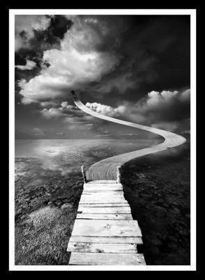 dans la vie chacun doit prendre un chemin différent !!!