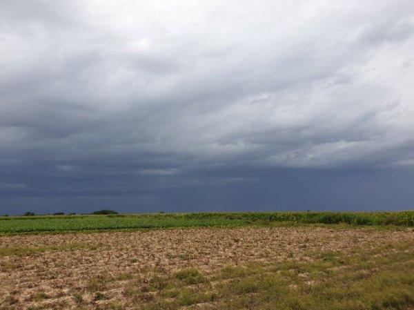 Paysages d'été et d'orage