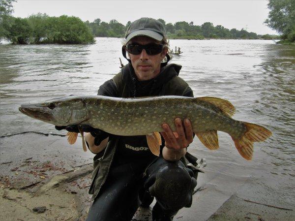 Pike de Loire