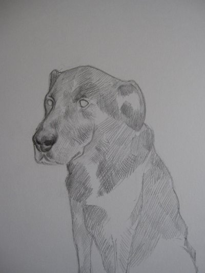 une esquisse qui ne mène à rien c'est çà une vie de chien ;)