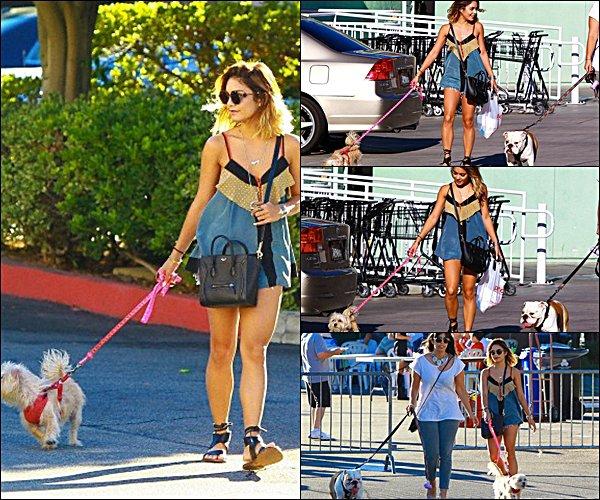 . 05.08.2014 - Vanney promenant son chien dans Studio City .