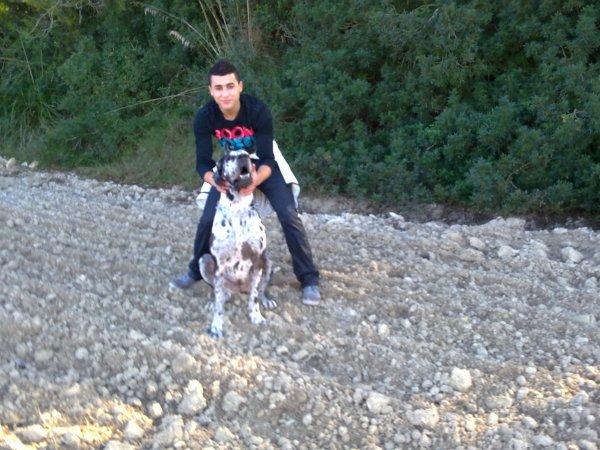 <<<<<<<< soy you con perro amirecano petboul <<<<<<<<<