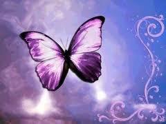 mon beau papillon