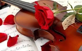 pour l'amour d'une rose