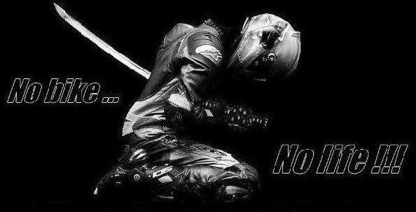 la moto, ma vie...