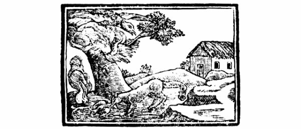 THE EAGLE & THE FOX Fable of AESOP