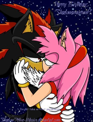 Shadow et Amy