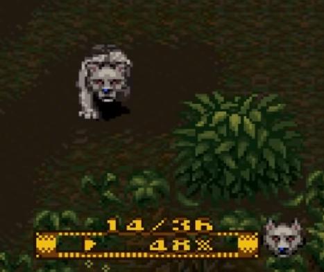 Loup = Lupus