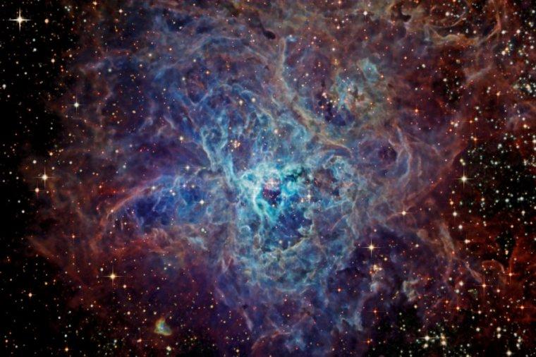 Nébuleuse de la Tarentule = 30 Doradus = NGC 2070