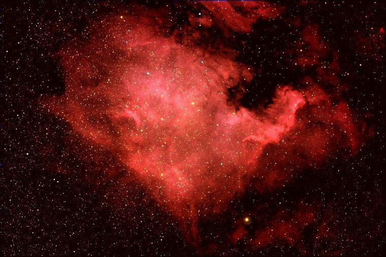 Nébuleuse de l'Amérique du Nord = NGC 7000 = Nebula North America