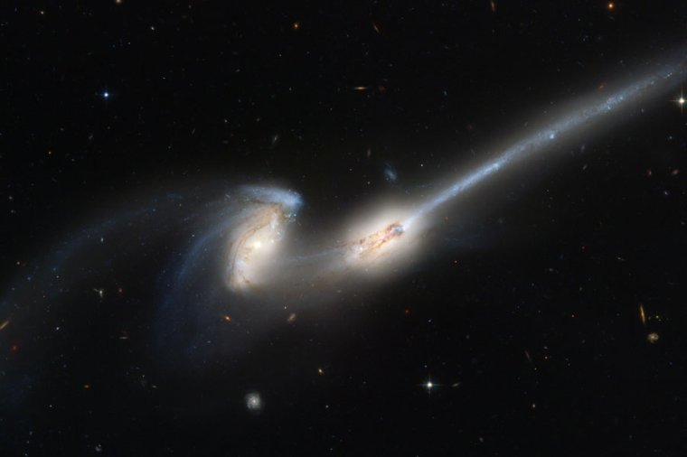 Cannibalisme galactique
