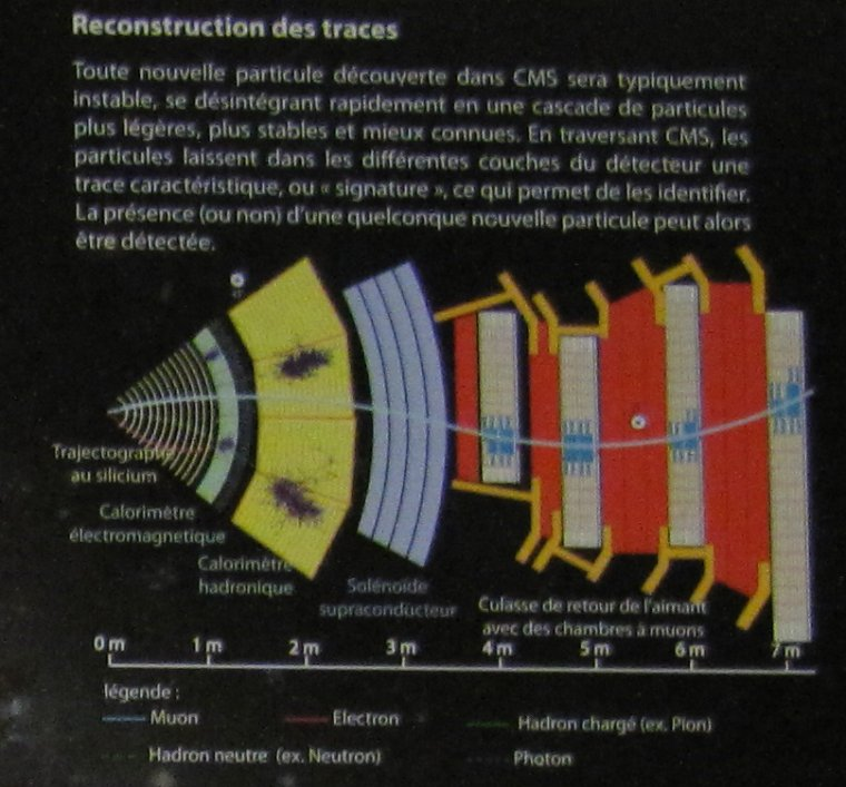 CMS = Compact Muon Solenoid