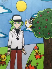 2013 - Pokemon : N