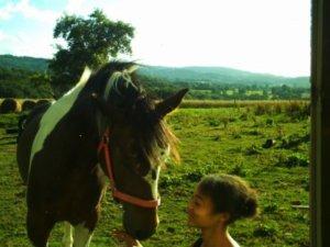 """""""La complicité entre un cheval et un homme est la plus belle chose qui puisse nous arriver"""""""