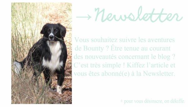 → Newsletter ✉