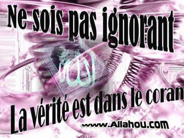 les muslim(a)