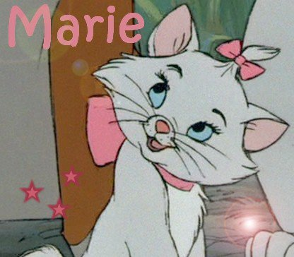 pour aristochats marie - Aristochats Marie