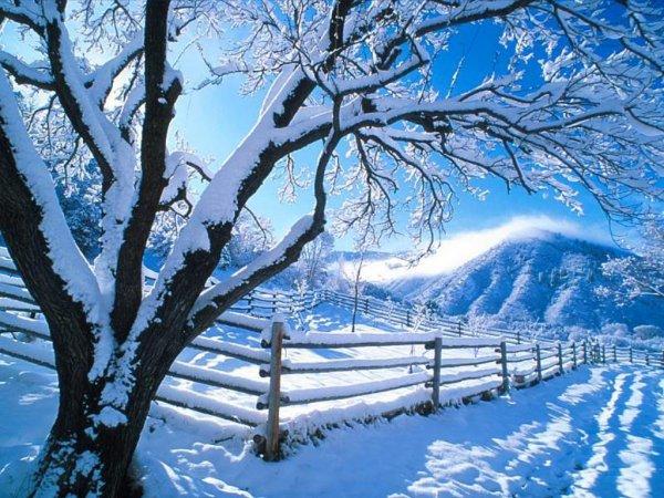 voila neige a grand pas