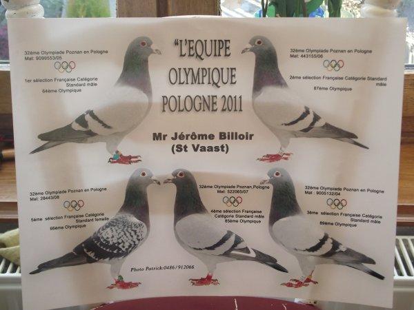 pigeon olympique       les 5premiers français