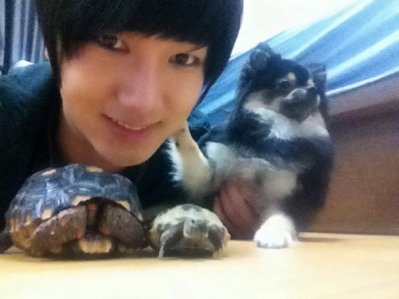 Yesung et ses tortues