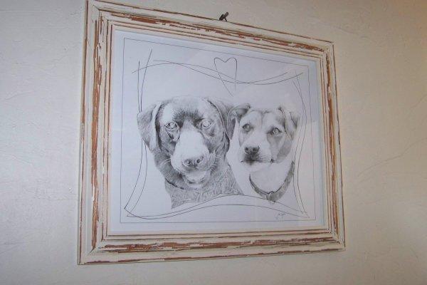 Les deux chien-chien immortallisés .