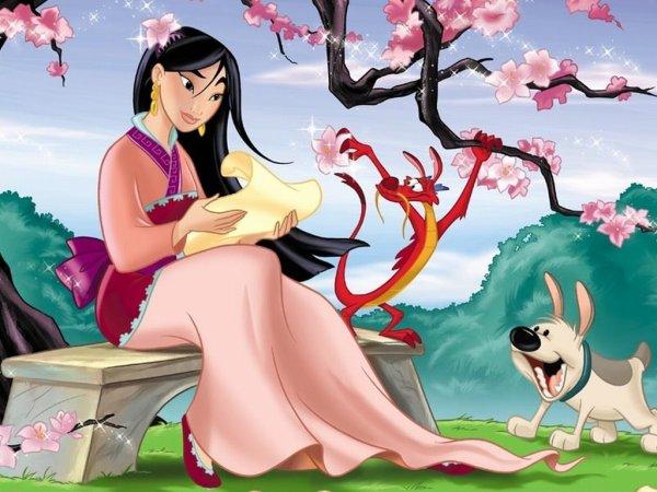 Image Disney Princesse Mulan