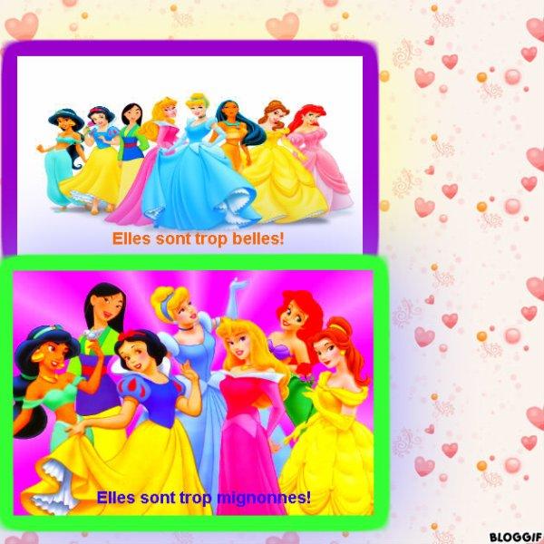 Montage Cendrillon,Belle,La Petite Sirène,Pocahontas,Mulan,La Belle au bois dormant,Jasmine et Blanche-Neige créé par moi