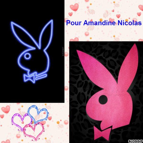 Montage Playboy créé par moi pour Amandine Nicolas