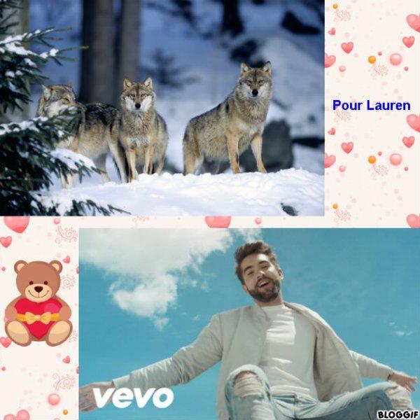 Montage 3 loups et Kendji Girac créé par moi pour Lauren