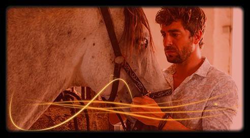 Image retouche Coup de foudre en Andalousie Alvaro et un cheval
