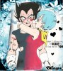 Giff Dragon Ball Bulma et Vegeta