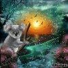 Giff Blingee Un koala